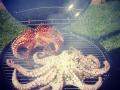 Octopus op de bbq